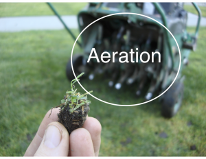 Aeration EcoTurf of Northern Colorado
