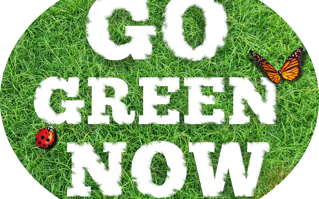 This Is The 21st Century–Your Lawn Care Service Should Reflect It!