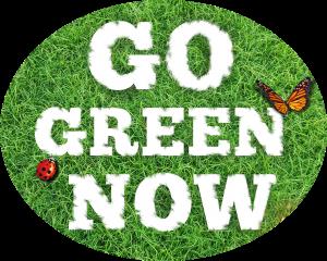 Go Green Now EcoTurf of Northern Colorado