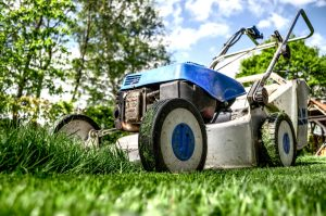 Lawn Mower Tips EcoTurf of Northern Colorado