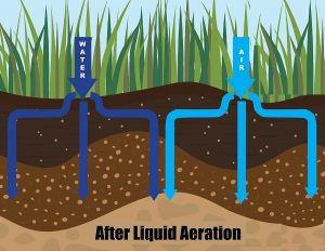 Liquid Aeration Process EcoTurf of Northern Colorado