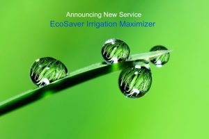 EcoSaver Water Saver EcoTurf of Northern Colorado