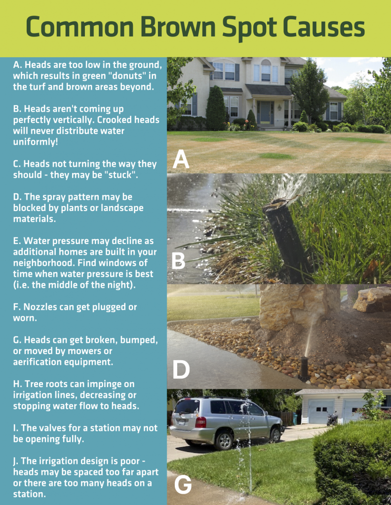 Brown Spots in lawns are most often caused by irrigation coverage. Here is a great resource from CSU Extension that summarizes info we share with our customers.