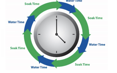 Irrigation: Cycle & Soak